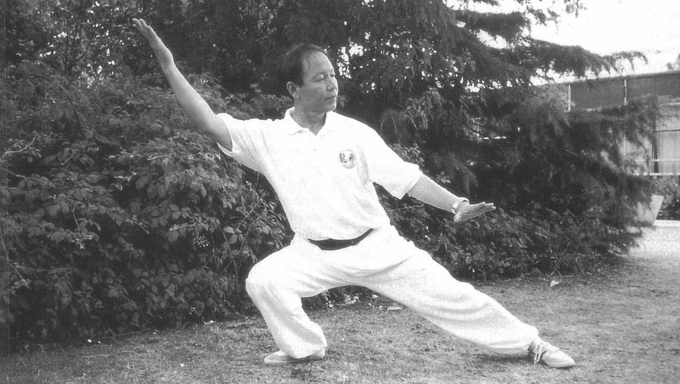 Professor Le Deyin, performing Xie Fei Shi (Oblique flying).